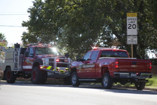 One man to ER after bee attack near EPHS